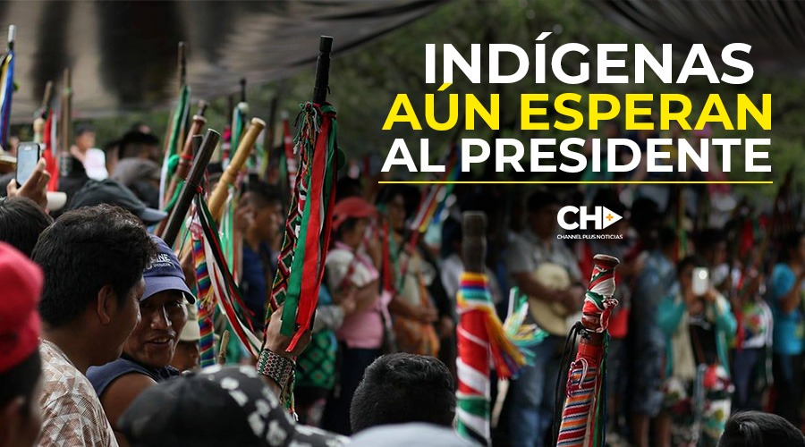CRISIS EN EL CAUCA: INDÍGENAS AÚN ESPERAN AL PRESIDENTE