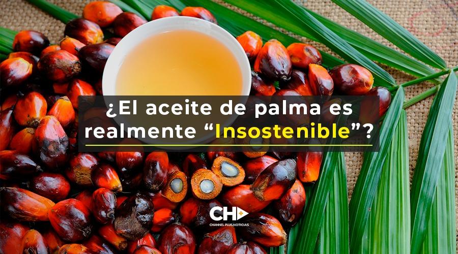 """¿El aceite de palma es realmente """"Insostenible""""?"""
