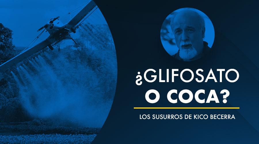 ¿GLIFOSATO O COCA? – LOS SUSURROS DE KICO BECERRA