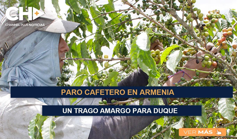 PARO CAFETERO EN ARMENIA , UN TRAGO AMARGO PARA DUQUE