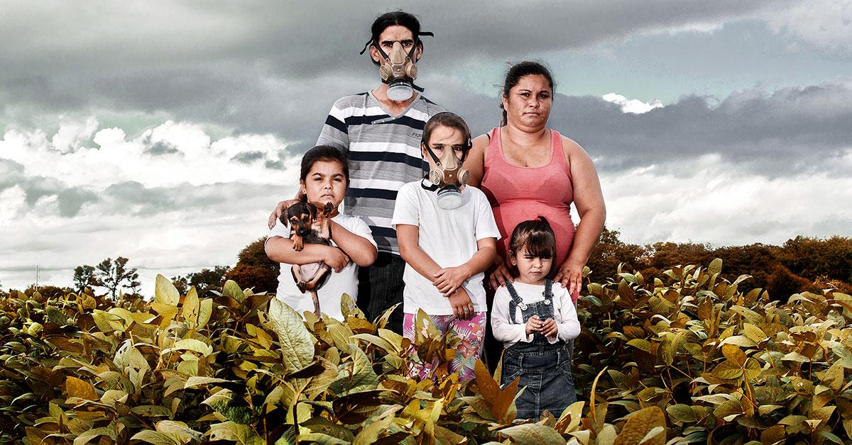¿Es el GLIFOSATO tóxico? La controversia que vive COLOMBIA