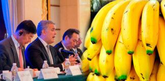 Acuerdo entre Colombia y China permitirá exportar US$40 millones de banano al año