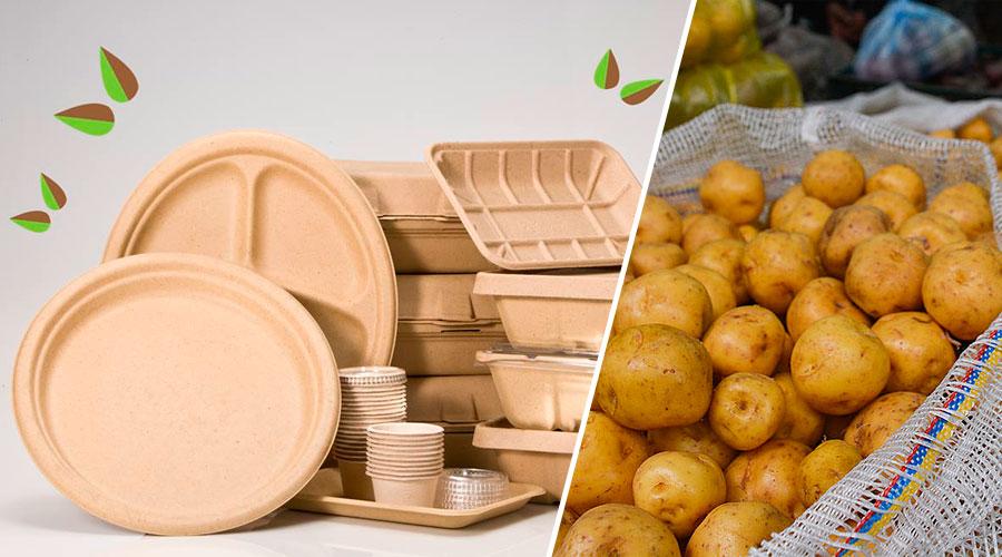 En Boyacá crean empaque biodegradable a partir de la papa criolla para remplazar el plástico