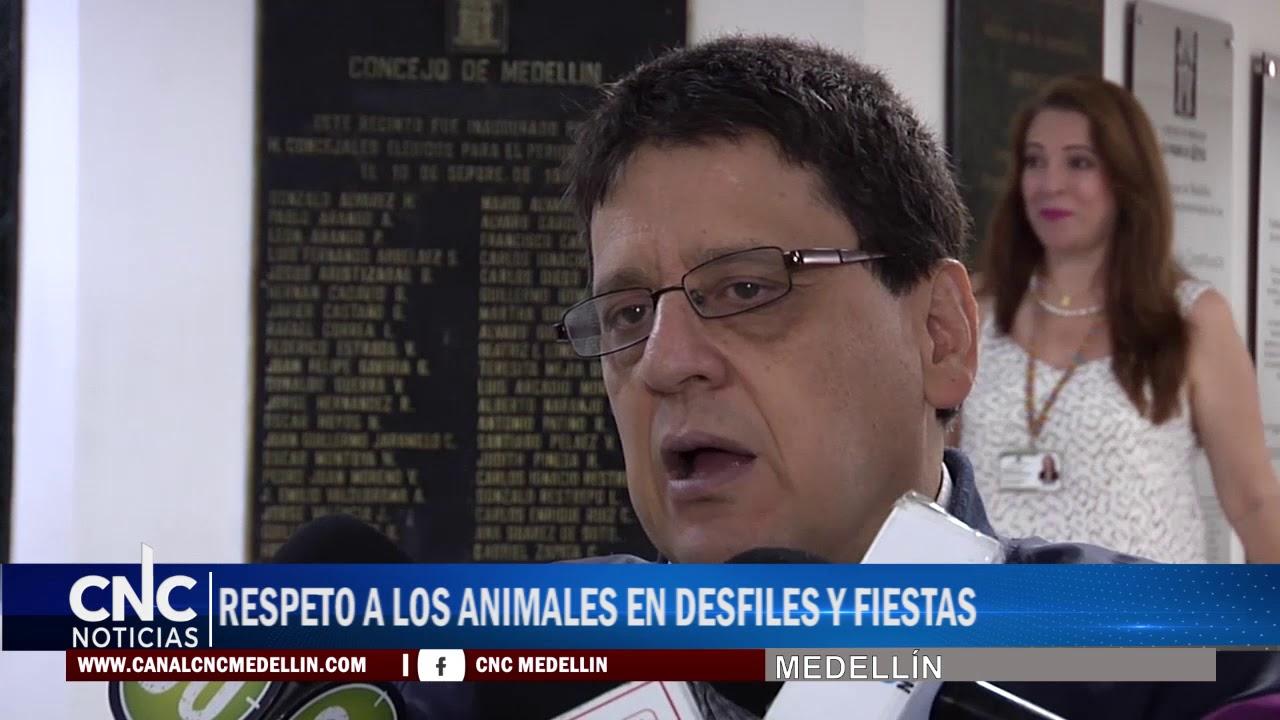 RESPETO A LOS ANIMALES EN DESFILES Y FIESTAS