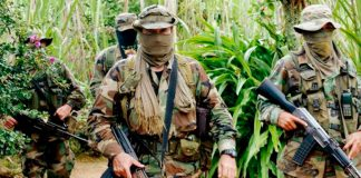 El CIDH pregunta al gobierno de Colombia ¿Quiénes son las 'Águilas Negras'?