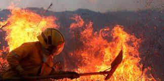 El 30 % de Colombia está en riesgo de incendios forestales