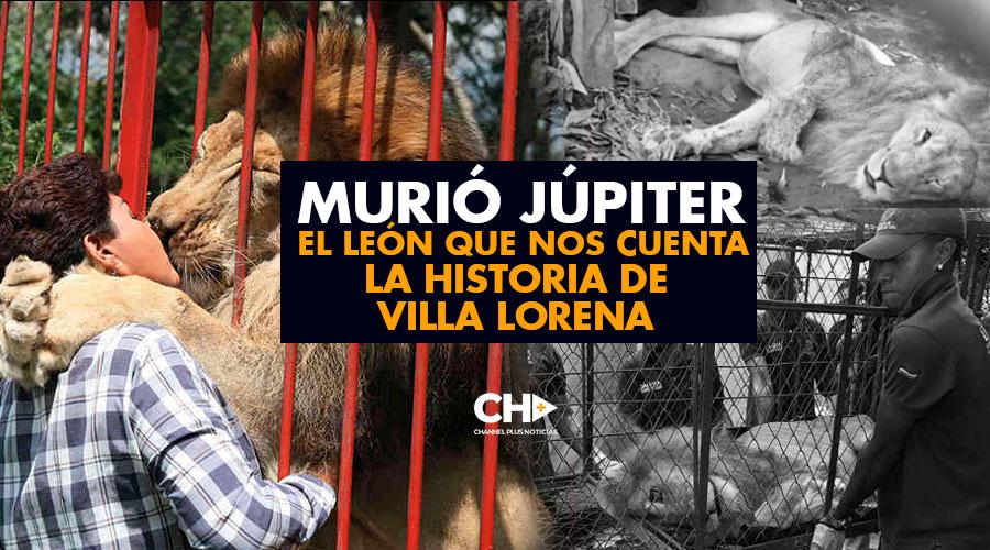 Murió JÚPITER el León que nos cuenta la HISTORIA de Villa Lorena