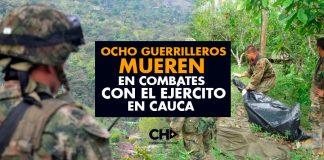 Ocho Guerrilleros de las Farc mueren en combates con el Ejército en Cauca