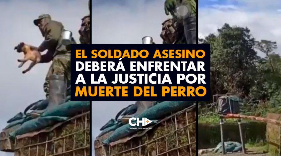 El SOLDADO ASESINO deberá enfrentar a la Justicia por MUERTE del Perro