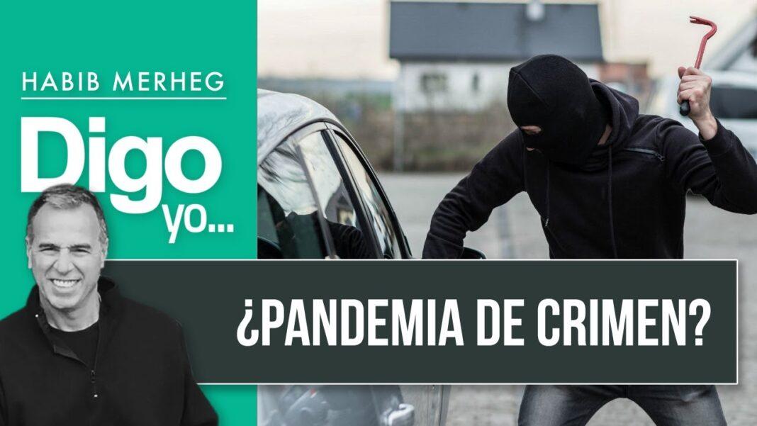¿PANDEMIA DEL CRIMEN?
