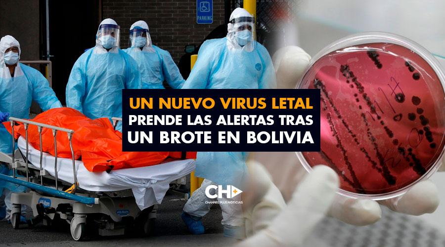 Un nuevo virus LETAL prende las alertas tras un brote en Bolivia