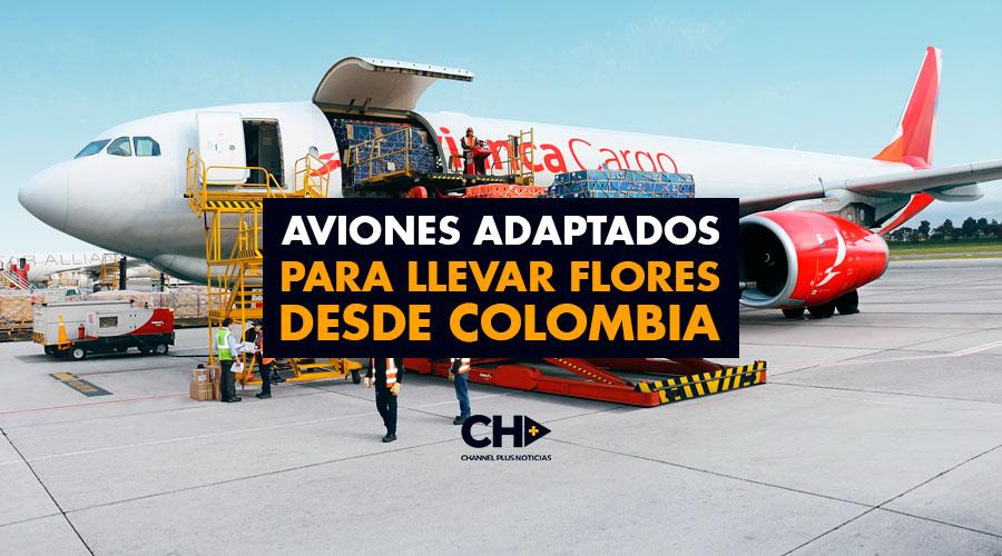 Aviones adaptados para llevar flores desde Colombia