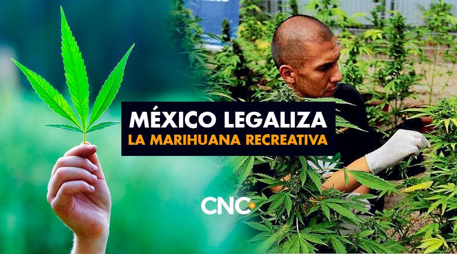 México legaliza la marihuana RECREATIVA