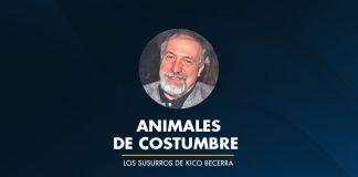 ANIMALES DE COSTUMBRE